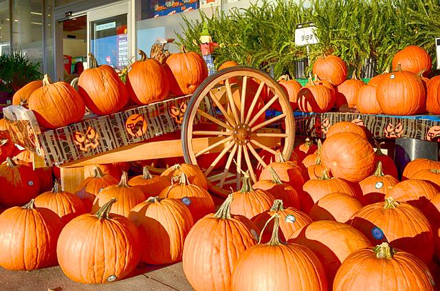 pumpkins-202133_640