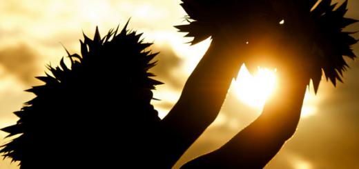 スクリーンショット(2014-10-27 0.35.12)